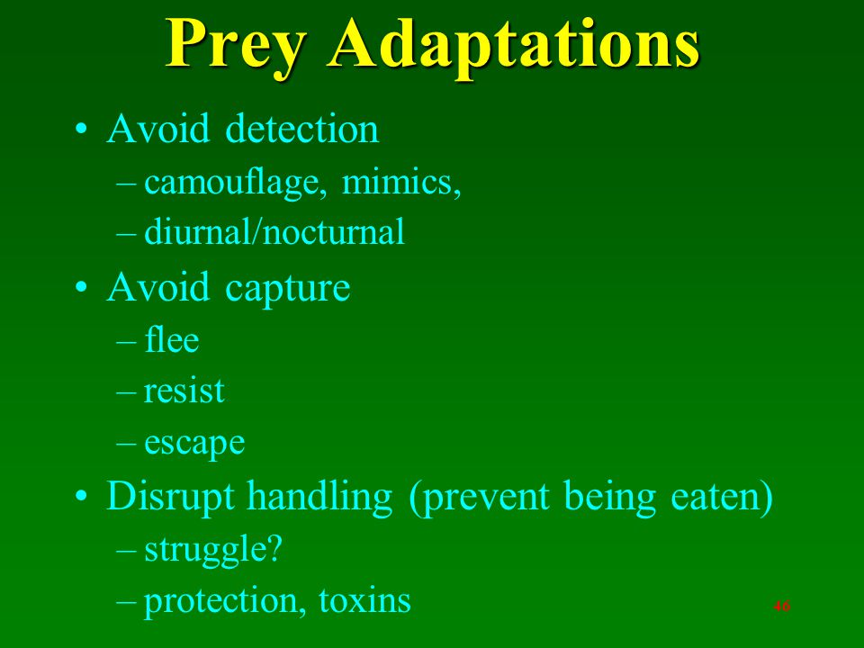 46 Prey Adaptations Avoid detection –camouflage, mimics, –diurnal/nocturnal Avoid capture –flee –resist –escape Disrupt handling (prevent being eaten) –struggle.