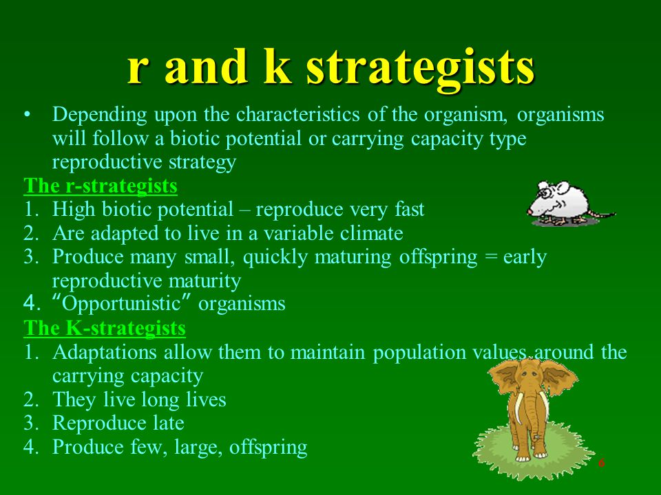 6 Depending upon the characteristics of the organism, organisms will follow a biotic potential or carrying capacity type reproductive strategy The r-strategists 1.High biotic potential – reproduce very fast 2.Are adapted to live in a variable climate 3.Produce many small, quickly maturing offspring = early reproductive maturity 4. Opportunistic organisms The K-strategists 1.Adaptations allow them to maintain population values around the carrying capacity 2.They live long lives 3.Reproduce late 4.Produce few, large, offspring r and k strategists