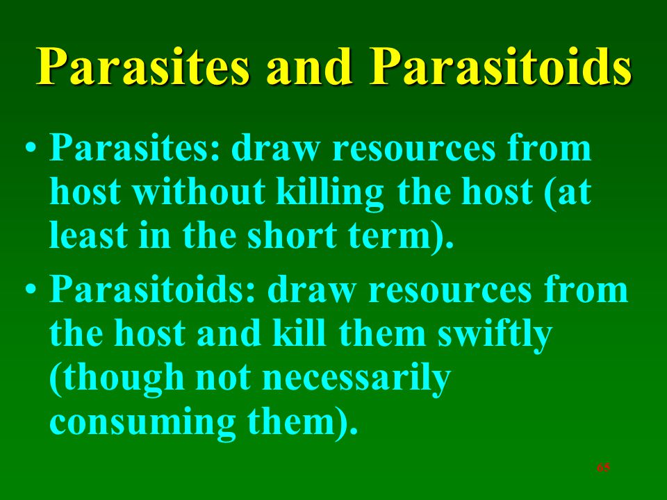 65 Parasites and Parasitoids Parasites: draw resources from host without killing the host (at least in the short term).