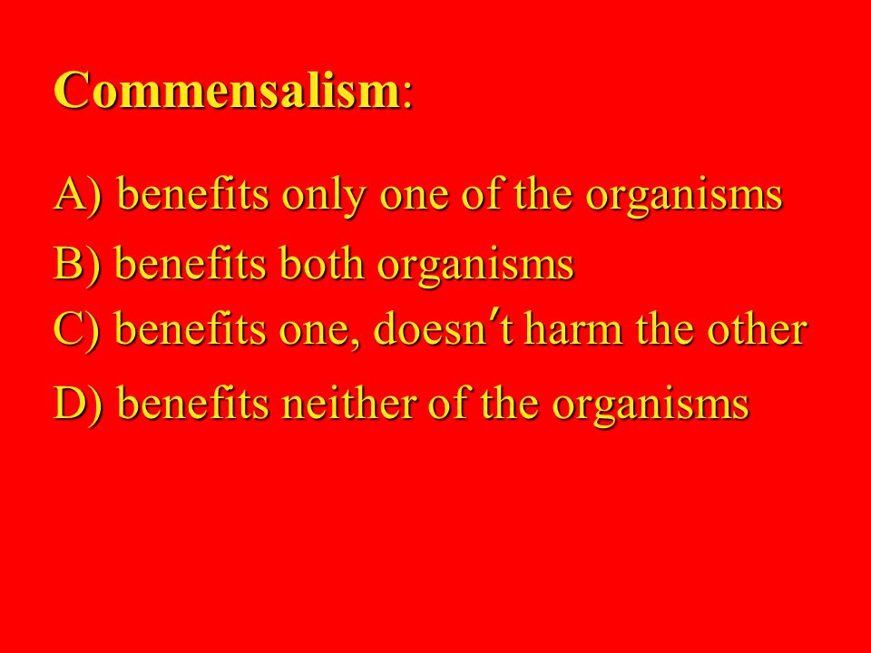 81 Commensalism: A) benefits only one of the organisms B) benefits both organisms C) benefits one, doesn't harm the other D) benefits neither of the organisms