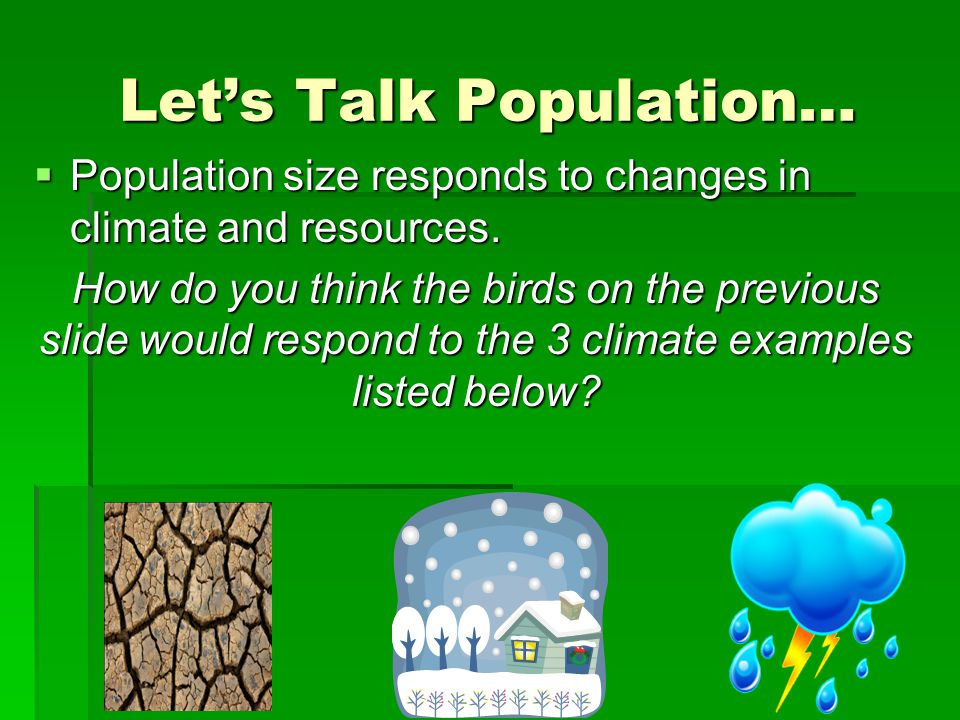 Let's Talk Population…  Population size responds to changes in climate and resources. How do you think the birds on the previous slide would respond