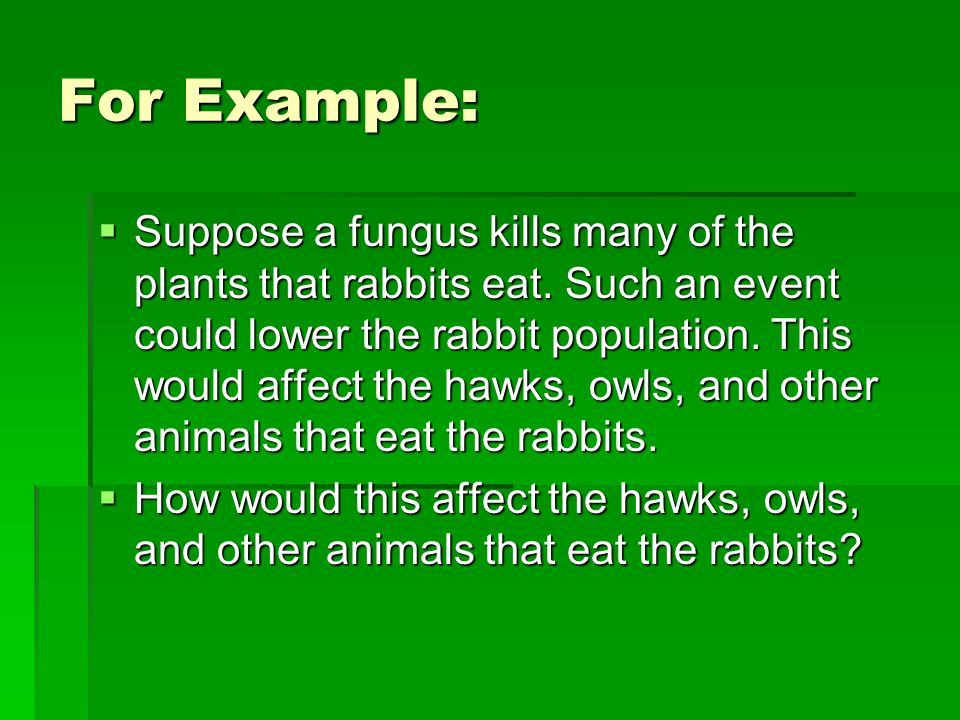 For Example:  Suppose a fungus kills many of the plants that rabbits eat.