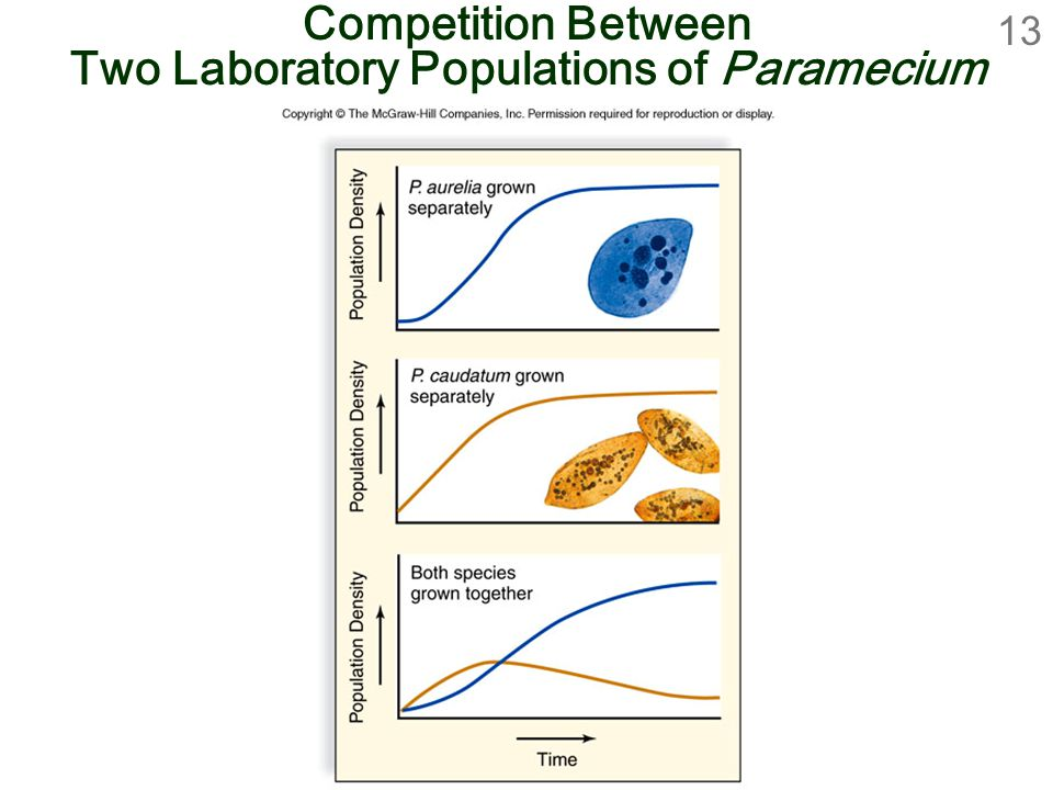13 Competition Between Two Laboratory Populations of Paramecium