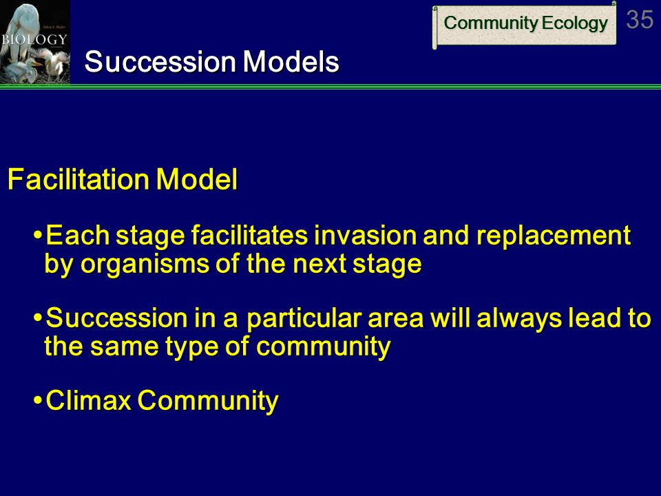 Community Ecology 35 Succession Models Facilitation Model  Each stage facilitates invasion and replacement by organisms of the next stage  Succession in a particular area will always lead to the same type of community  Climax Community