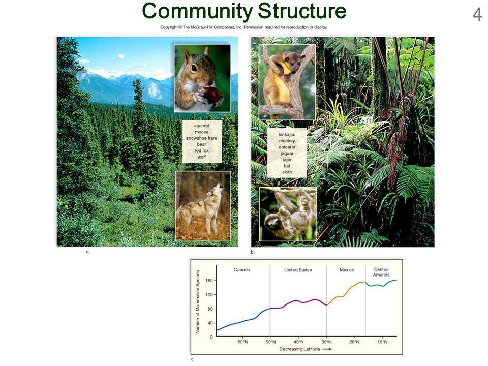 4 Community Structure