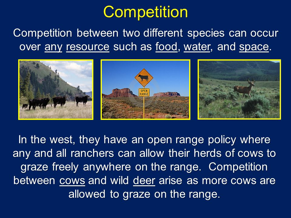 Competition Competition between two different species can occur over any resource such as food, water, and space. In the west, they have an open range