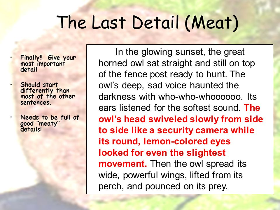 The Last Detail (Meat) Finally!.