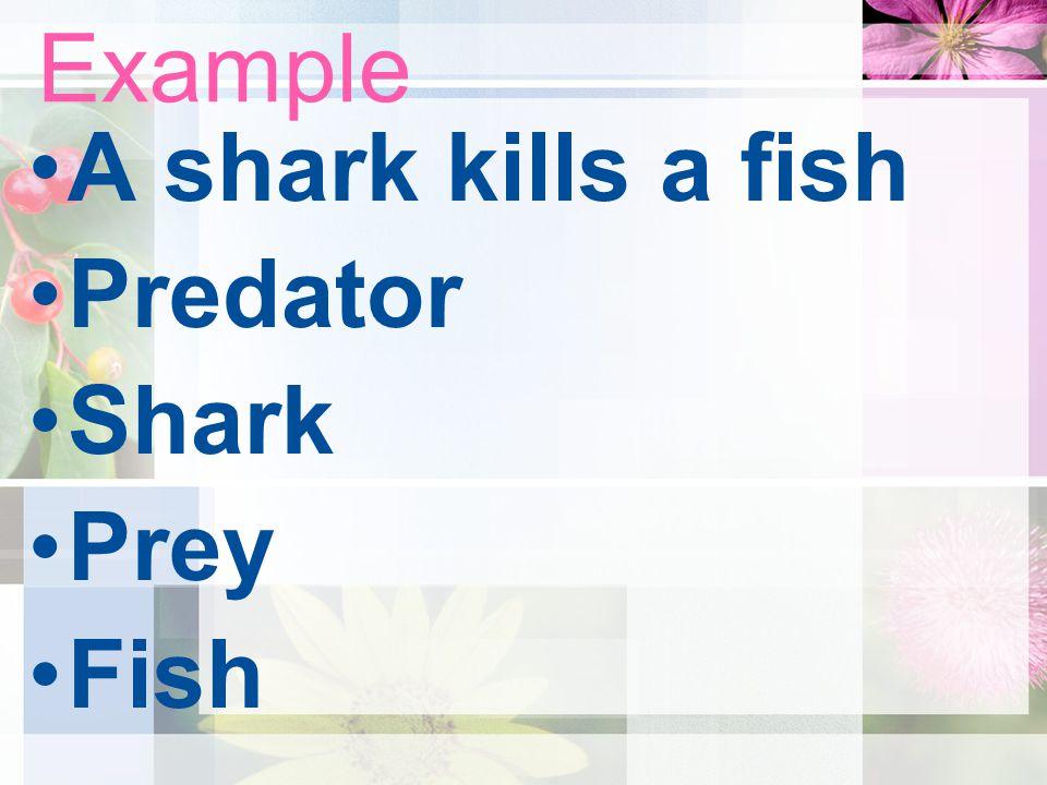 Example A shark kills a fish Predator Shark Prey Fish