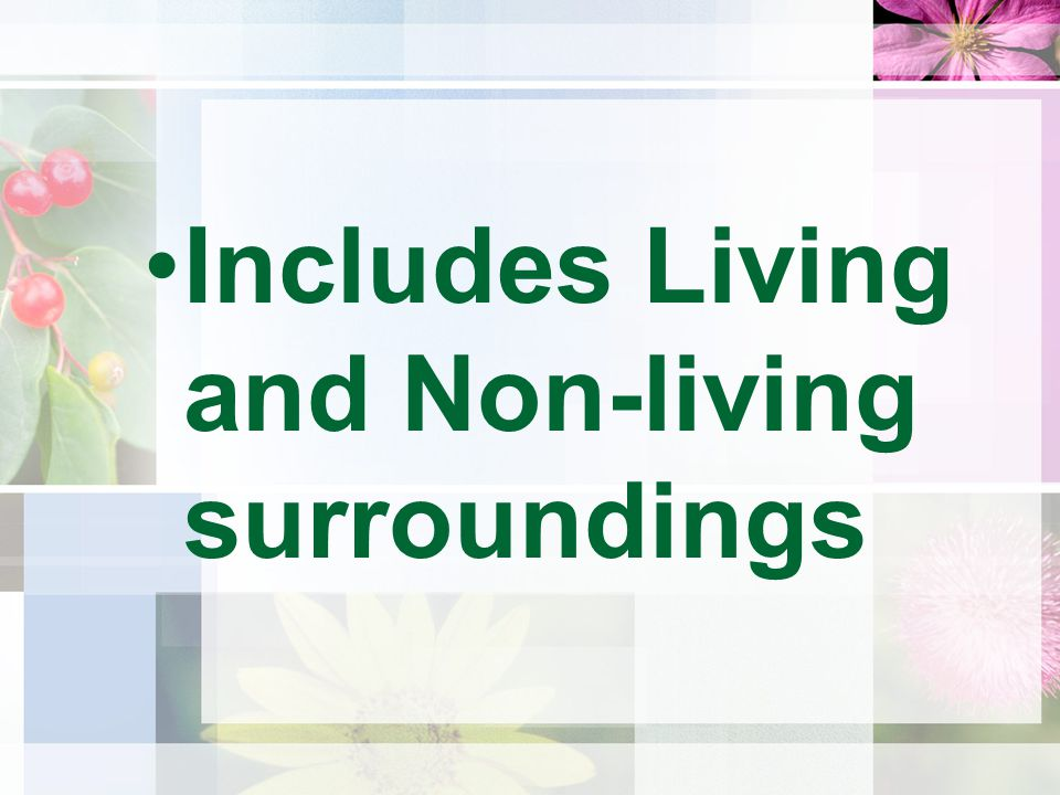 Includes Living and Non-living surroundings