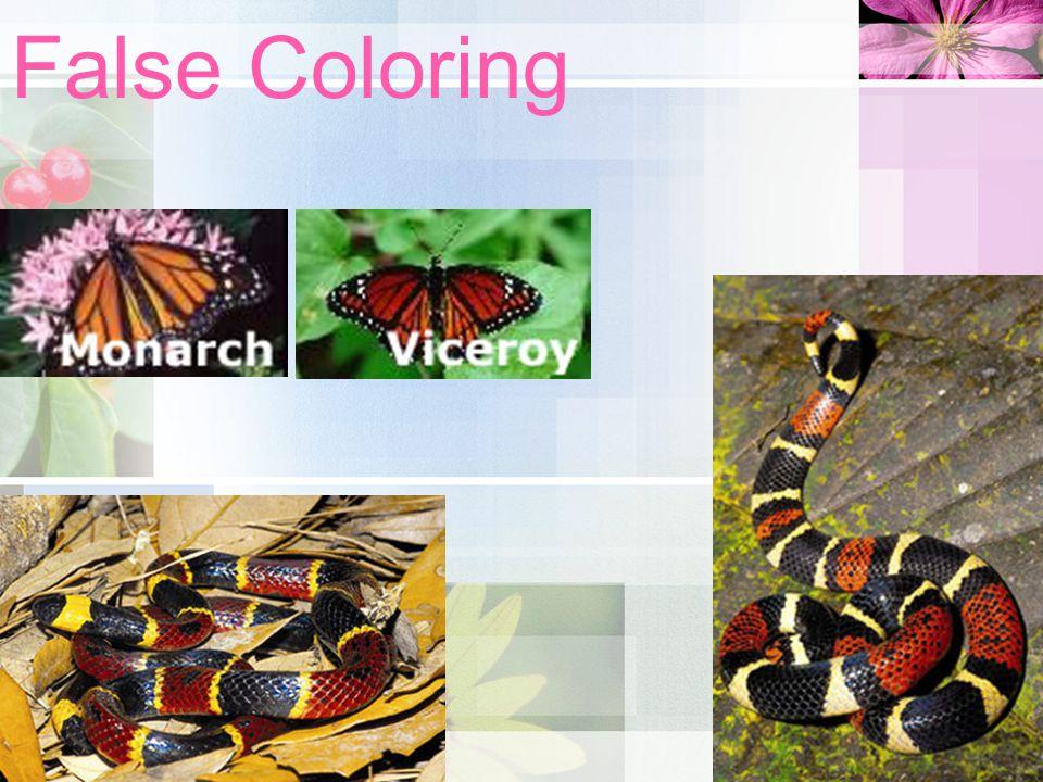 False Coloring