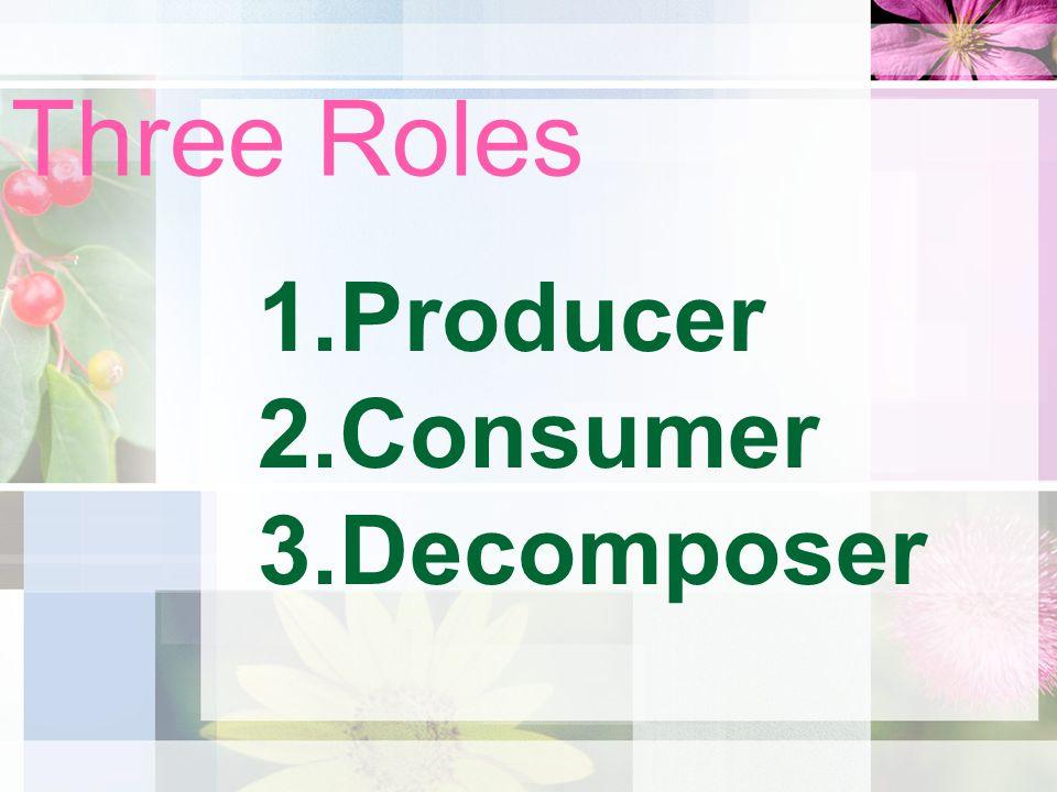 Three Roles 1.Producer 2.Consumer 3.Decomposer