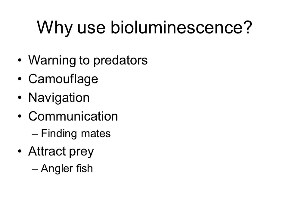 Why use bioluminescence? Warning to predators Camouflage Navigation Communication –Finding mates Attract prey –Angler fish