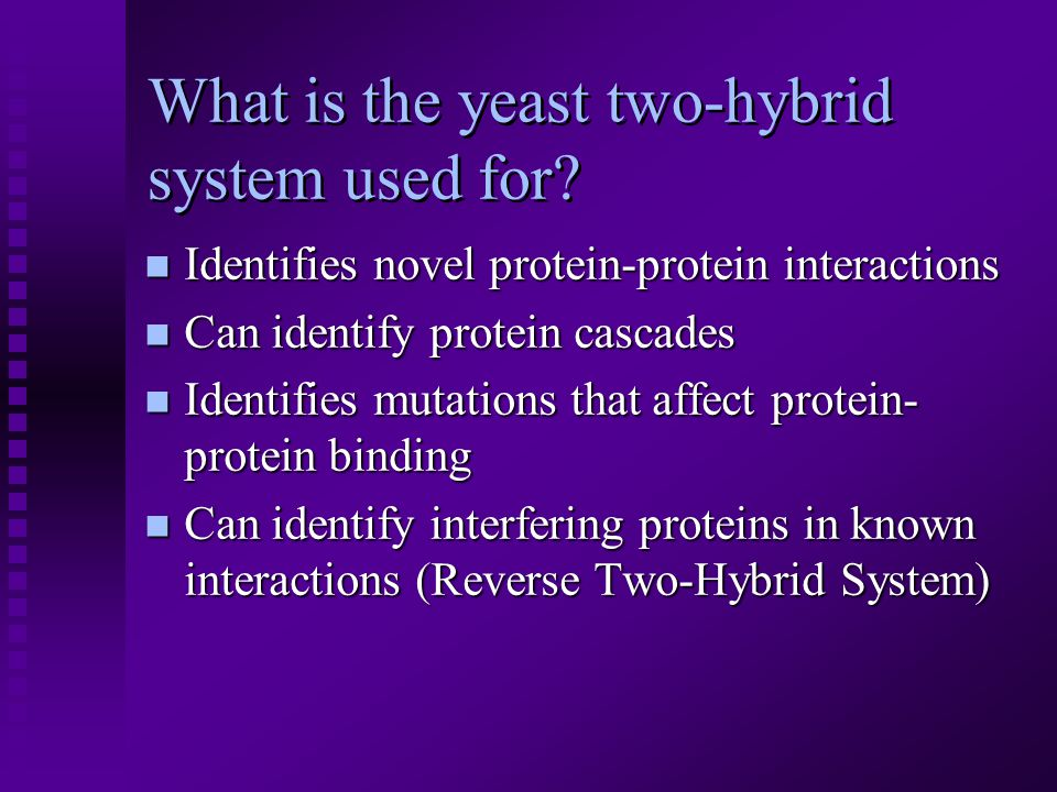 What is the yeast two-hybrid system used for.