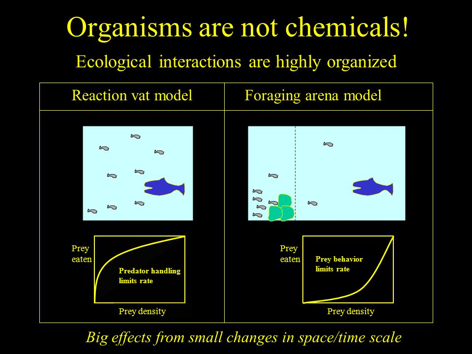Organisms are not chemicals.