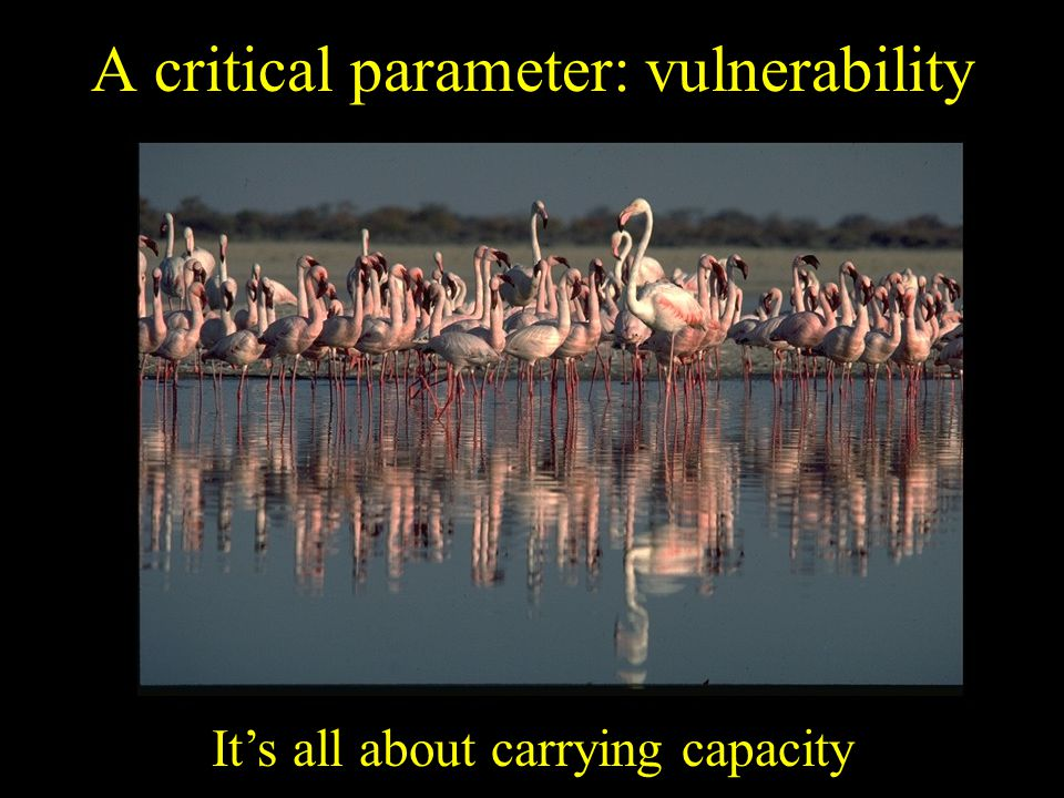 A critical parameter: vulnerability It's all about carrying capacity