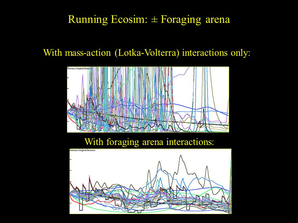Running Ecosim: ± Foraging arena With mass-action (Lotka-Volterra) interactions only: With foraging arena interactions: