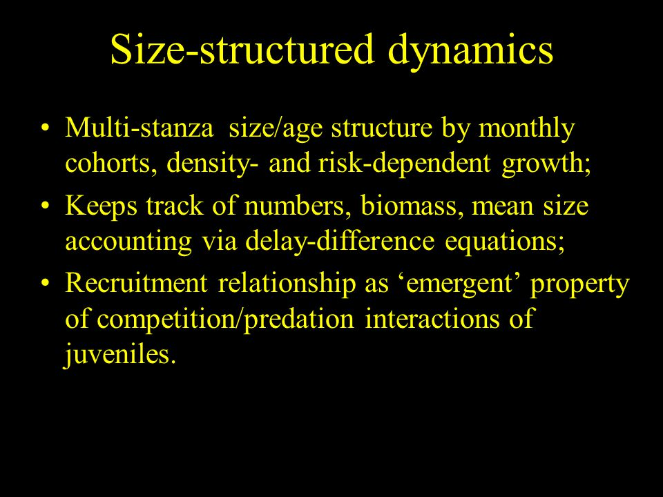 Multi-stanza size/age structure by monthly cohorts, density- and risk-dependent growth; Keeps track of numbers, biomass, mean size accounting via delay-difference equations; Recruitment relationship as 'emergent' property of competition/predation interactions of juveniles.