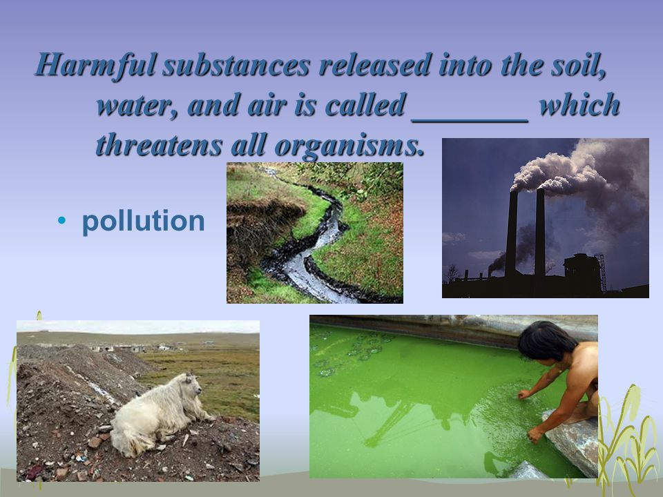 Harmful substances released into the soil, water, and air is called _______ which threatens all organisms. pollution