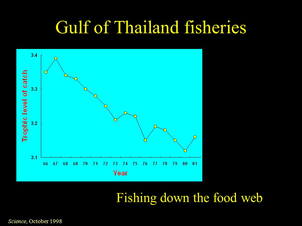 Gulf of Thailand fisheries Science, October 1998 Fishing down the food web