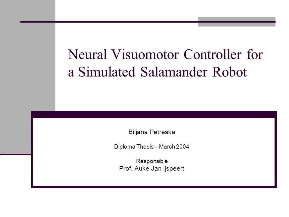 Neural Visuomotor Controller for a Simulated Salamander Robot Biljana Petreska Diploma Thesis – March 2004 Responsible Prof.