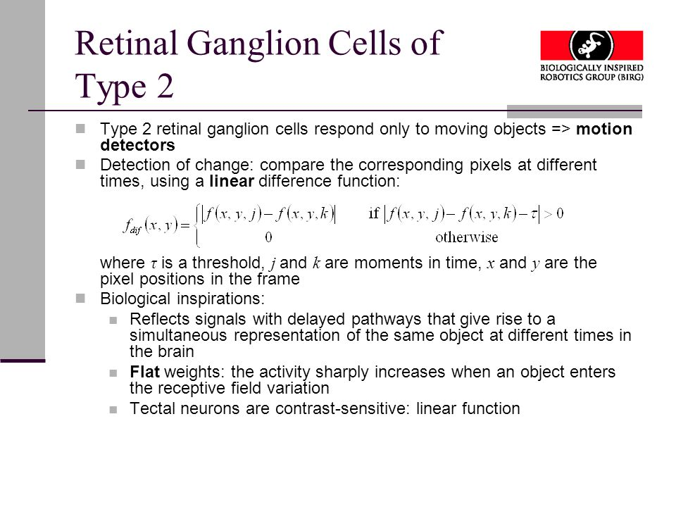 Retinal Ganglion Cells of Type 2 Type 2 retinal ganglion cells respond only to moving objects => motion detectors Detection of change: compare the corresponding pixels at different times, using a linear difference function: where τ is a threshold, j and k are moments in time, x and y are the pixel positions in the frame Biological inspirations: Reflects signals with delayed pathways that give rise to a simultaneous representation of the same object at different times in the brain Flat weights: the activity sharply increases when an object enters the receptive field variation Tectal neurons are contrast-sensitive: linear function