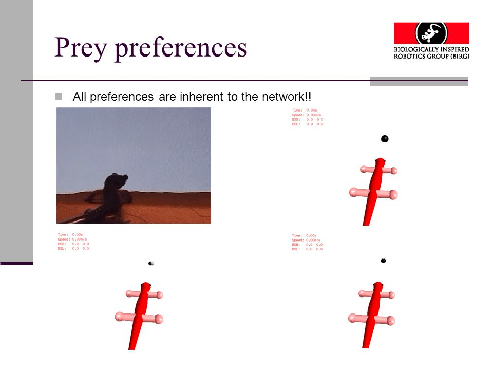 Prey preferences All preferences are inherent to the network!!