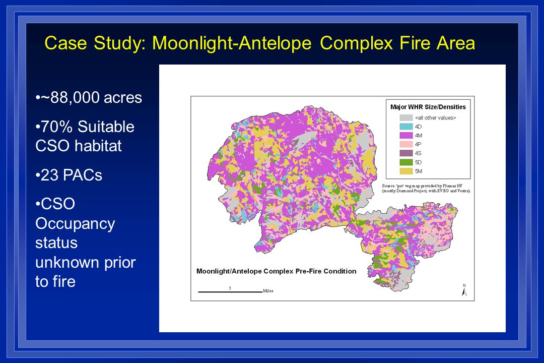Case Study: Moonlight-Antelope Complex Fire Area ~88,000 acres 70% Suitable CSO habitat 23 PACs CSO Occupancy status unknown prior to fire