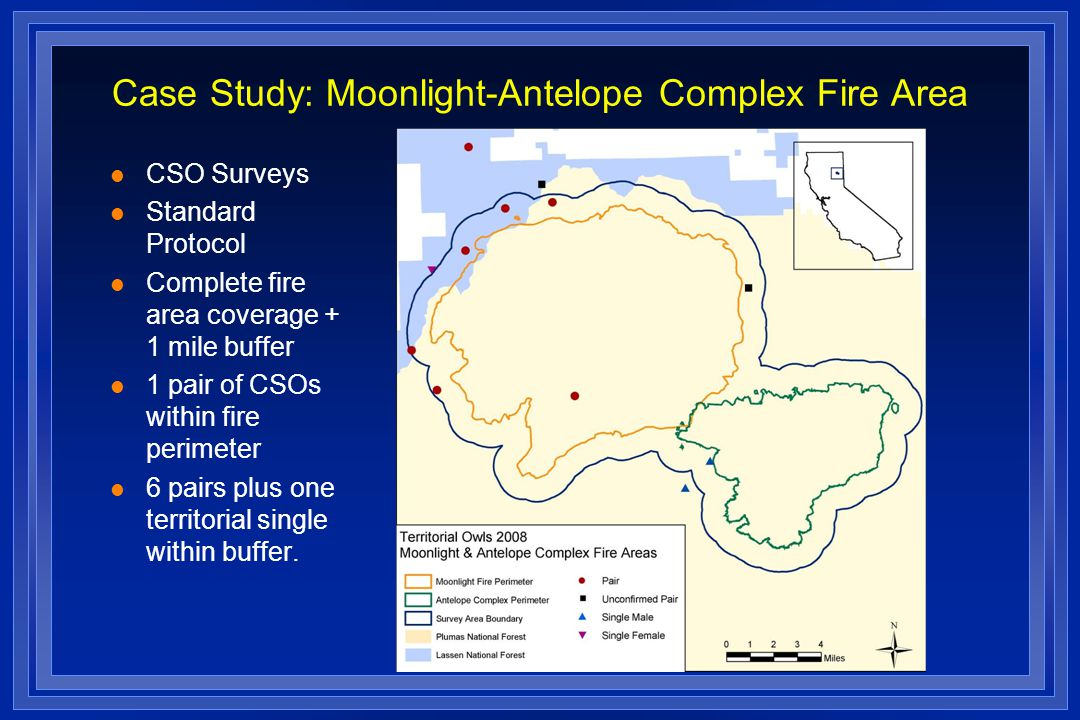 Case Study: Moonlight-Antelope Complex Fire Area l CSO Surveys l Standard Protocol l Complete fire area coverage + 1 mile buffer l 1 pair of CSOs within fire perimeter l 6 pairs plus one territorial single within buffer.