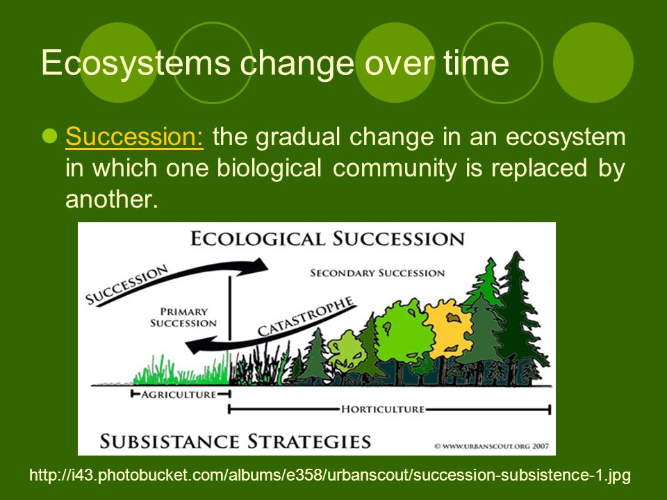 Ecosystems change over time Succession: the gradual change in an ecosystem in which one biological community is replaced by another.
