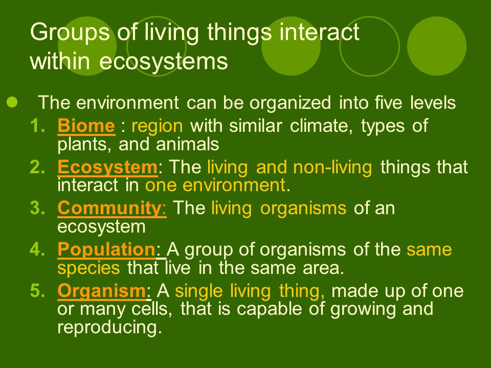 Groups of living things interact within ecosystems The environment can be organized into five levels 1.Biome : region with similar climate, types of plants, and animals 2.Ecosystem: The living and non-living things that interact in one environment.