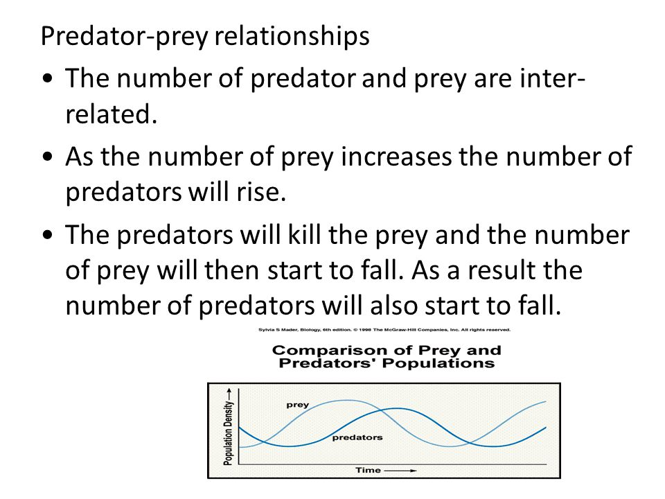 Predator-prey relationships The number of predator and prey are inter- related.