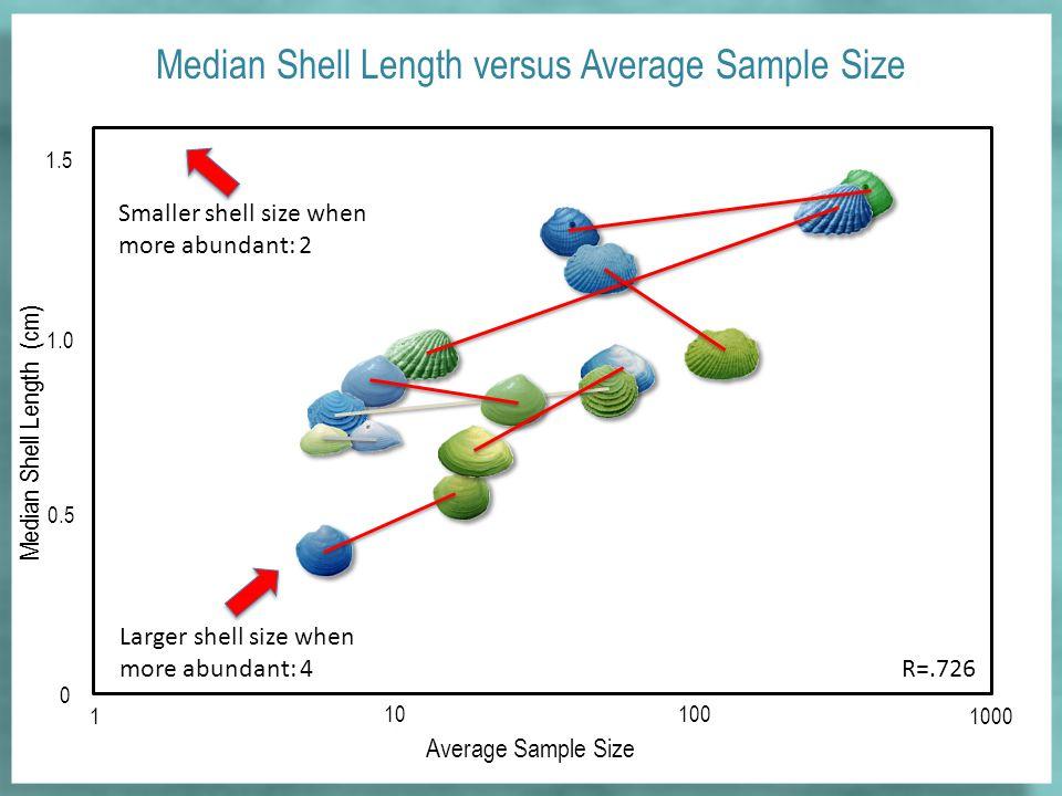Median Shell Length versus Average Sample Size Average Sample Size 0 1 10100 1000 0.5 1.0 1.5 Median Shell Length (cm) R=.726 Smaller shell size when more abundant: 2 Larger shell size when more abundant: 4