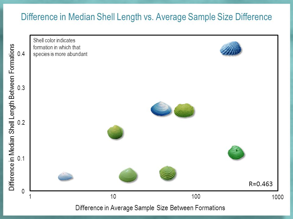 Difference in Average Sample Size Between Formations 0 110100 1000 0.1 0.2 0.3 0.4 Difference in Median Shell Length Between Formations R=0.463 Difference in Median Shell Length vs.