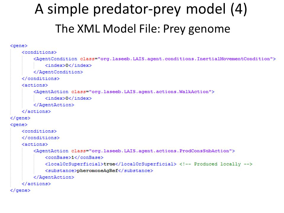 A simple predator-prey model (4) The XML Model File: Prey genome