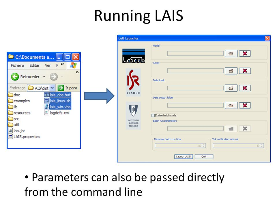 Running LAIS Parameters can also be passed directly from the command line