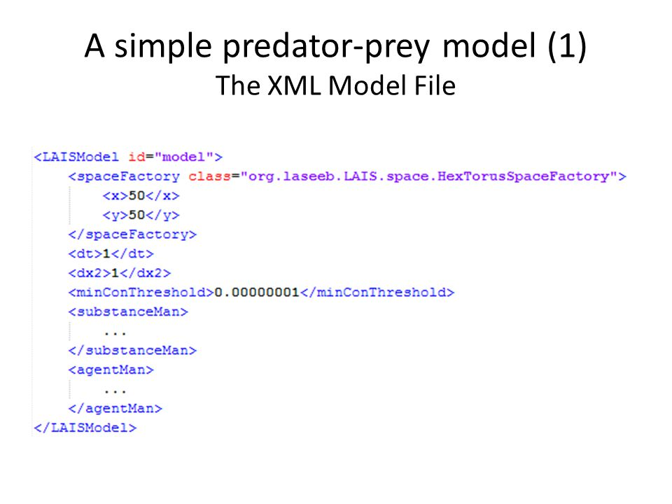 A simple predator-prey model (1) The XML Model File