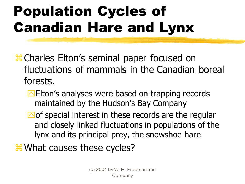 Population Cycles of Canadian Hare and Lynx zCharles Elton's seminal paper focused on fluctuations of mammals in the Canadian boreal forests. yElton's