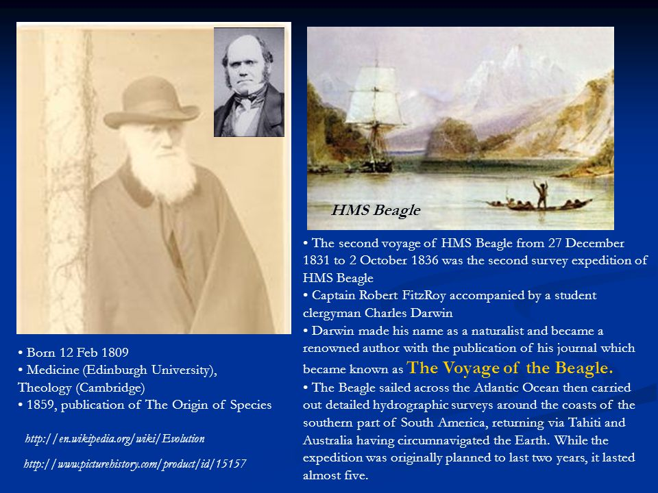 http://www.picturehistory.com/product/id/15157 HMS Beagle http://en.wikipedia.org/wiki/Evolution The second voyage of HMS Beagle from 27 December 1831 to 2 October 1836 was the second survey expedition of HMS Beagle Captain Robert FitzRoy accompanied by a student clergyman Charles Darwin Darwin made his name as a naturalist and became a renowned author with the publication of his journal which became known as The Voyage of the Beagle.
