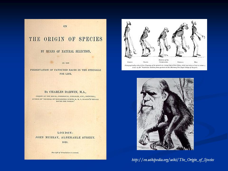 http://en.wikipedia.org/wiki/The_Origin_of_Species
