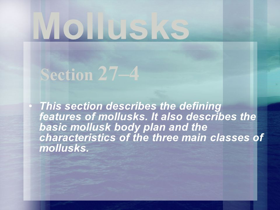 Mollusks This section describes the defining features of mollusks. It also describes the basic mollusk body plan and the characteristics of the three