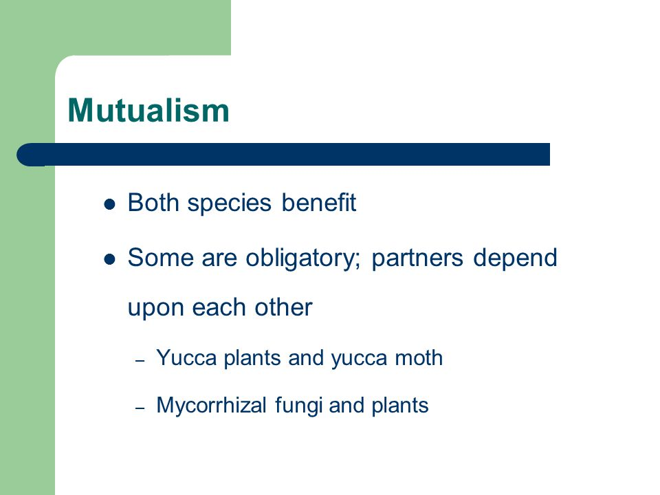 Mutualism Both species benefit Some are obligatory; partners depend upon each other – Yucca plants and yucca moth – Mycorrhizal fungi and plants