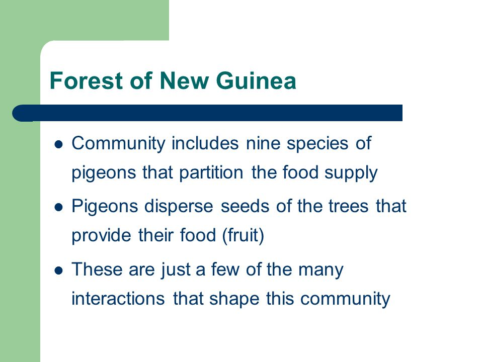 Forest of New Guinea Community includes nine species of pigeons that partition the food supply Pigeons disperse seeds of the trees that provide their food (fruit) These are just a few of the many interactions that shape this community