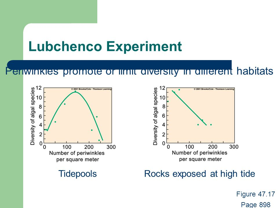 Lubchenco Experiment TidepoolsRocks exposed at high tide Periwinkles promote or limit diversity in different habitats Figure 47.17 Page 898