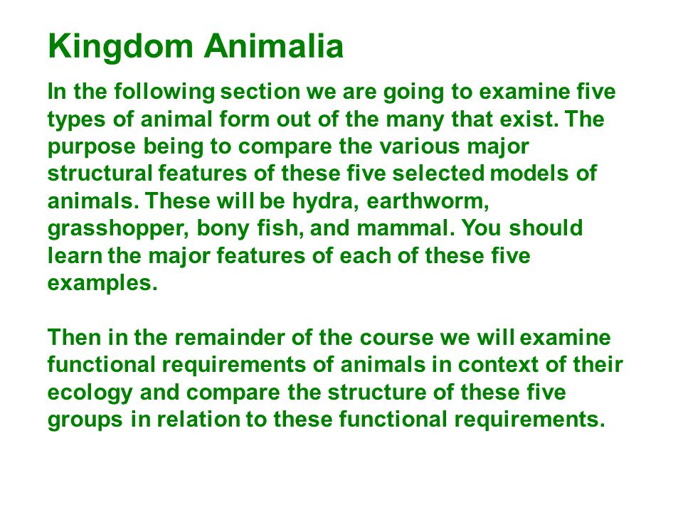 Kingdom Animalia In the following section we are going to examine five types of animal form out of the many that exist. The purpose being to compare t