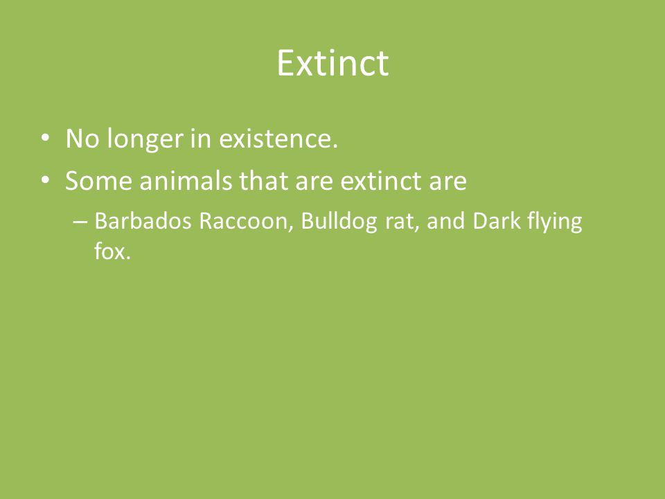 Extinct No longer in existence. Some animals that are extinct are – Barbados Raccoon, Bulldog rat, and Dark flying fox.