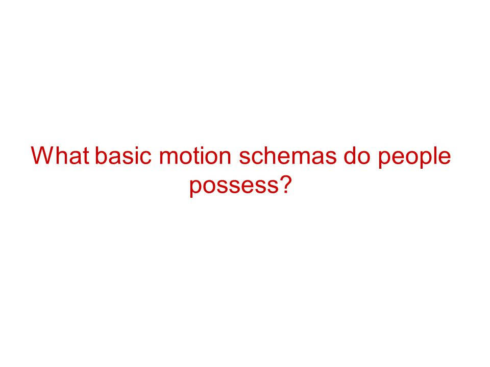 What basic motion schemas do people possess