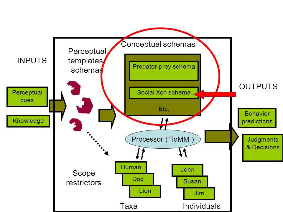Perceptual cues Predator-prey schema Social Xch schema Etc.