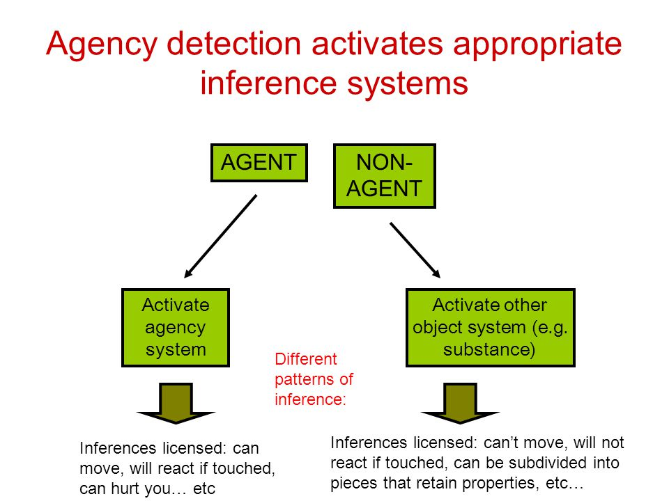 Agency detection activates appropriate inference systems AGENTNON- AGENT Activate agency system Activate other object system (e.g. substance) Inferenc