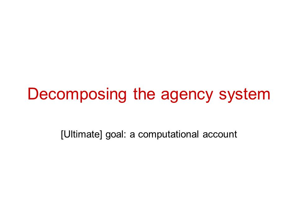 Decomposing the agency system [Ultimate] goal: a computational account