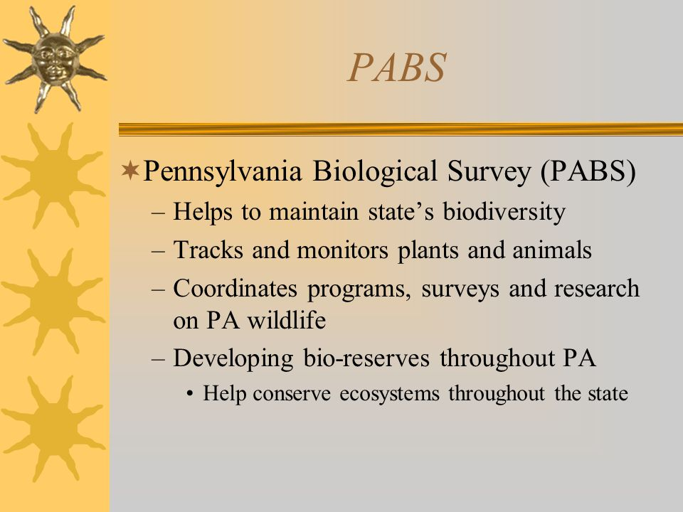 PABS  Pennsylvania Biological Survey (PABS) –Helps to maintain state's biodiversity –Tracks and monitors plants and animals –Coordinates programs, surveys and research on PA wildlife –Developing bio-reserves throughout PA Help conserve ecosystems throughout the state